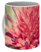 Exploding Pink Flower Coffee Mug