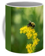 Exploring Goldenrod 2 Coffee Mug