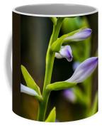 Exploring Hostas 2 Coffee Mug