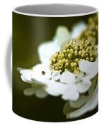 Exploring The Flowers Coffee Mug