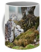 Exposed Roots Coffee Mug