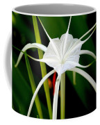 Exquisite Spider Lily Coffee Mug