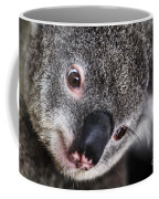 Eye Am Watching You - Koala Coffee Mug