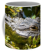Eye Of The Alligator Coffee Mug