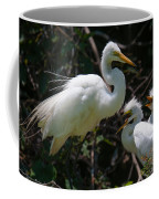 Eye Of The Egret Coffee Mug