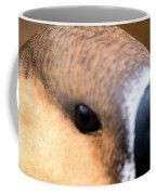 Eye Of The Gander Coffee Mug