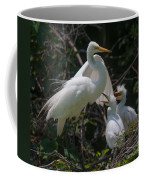 Eye Of The Heron Coffee Mug