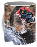 Eye Of The Muscovy Duck Coffee Mug