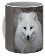 Eyes Of The Arctic Fox Coffee Mug