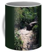 New York's Central Park Coffee Mug