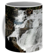 F Stop Glen Alpine Falls Coffee Mug