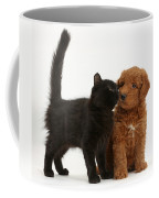 F1b Goldendoodle Pup With Kitten Coffee Mug