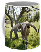 Fabulous Texas Longhorn Coffee Mug