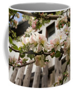 Facades And Fruit Trees Coffee Mug