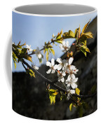 Facades And Fruit Trees - The Church And The Plum Coffee Mug