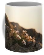 Face The Light Coffee Mug