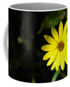 Facing The Light 2 Coffee Mug