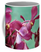 Fade Into Pink Coffee Mug
