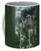 Fading Teasel Flower Coffee Mug