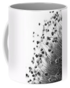 Fading Thrift Coffee Mug
