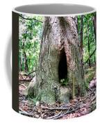 Fairy Blessings Coffee Mug