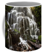 Fairy Falls Oregon Coffee Mug by Mary Jo Allen