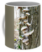 Fairy Staircase Coffee Mug