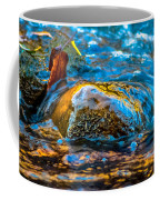 Fairy Tale Waters Coffee Mug
