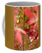 Fall 08-007 Coffee Mug