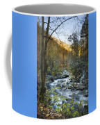 Fall Along Citico Creek Coffee Mug