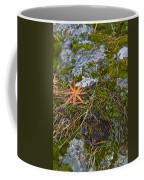 Fall And Moss Coffee Mug