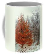 Fall And Winter 2 Coffee Mug