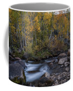 Fall At Bishop Creek Coffee Mug