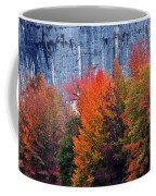 Fall At Steele Creek Coffee Mug