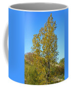 Fall At The Dunes Coffee Mug