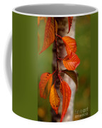 Fall Beauty Coffee Mug