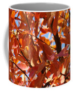 Fall Color 2 Coffee Mug