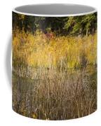Fall Color At Banff Spring Basin Coffee Mug