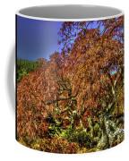 Fall Color At Biltmore Coffee Mug