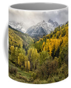 Fall Color In The Rockies Near Ouray Dsc07913 Coffee Mug