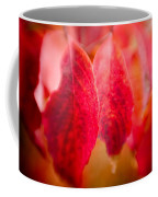Fall Colors 0666 Coffee Mug