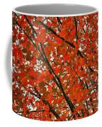 Fall Colors 2014-10 Coffee Mug