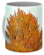 Fall Colors 2014-11 Coffee Mug