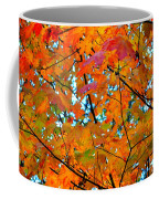 Fall Colors 2014-5 Coffee Mug