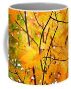 Fall Colors 2014-7 Coffee Mug