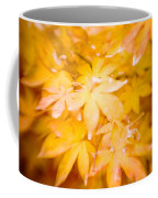Fall Colors 6664 Coffee Mug