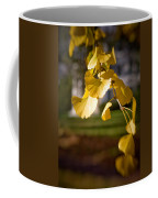 Fall Colors 6737 Coffee Mug
