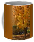 Fall Colors Coffee Mug by Adam Romanowicz
