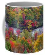 Fall Colors Along Tanasee Road Coffee Mug