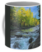 Fall Colors And The Little Salmon River Coffee Mug